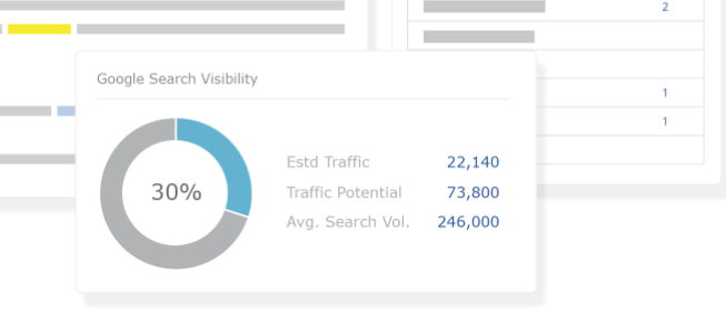 Google Search Visibility section